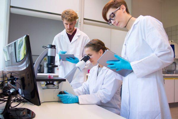 Neu: Studieren in Bad Kreuznach